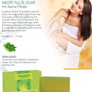 alluring-neem-and-tulsi-soap