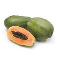 Ripe Papaya Extracts.
